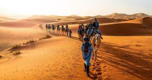 المغرب أفضل وجهة سياحية بالشرق الأوسط فى مؤشر السفر العالمي للحياة البرية
