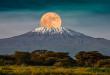 عائدات تنزانيا من السياحة تتراجع إلى النصف بسبب كورونا