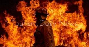 هطول الأمطار يوقف تقدم النيران فى حرائق استراليا
