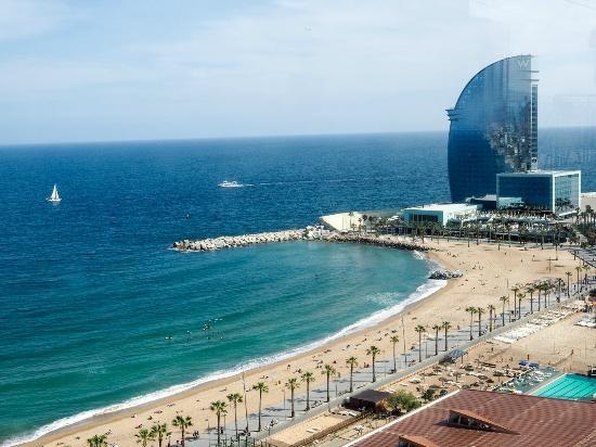 موقع ترافل بلس يعرض قائمة أفضل مدن شاطئية في العالم ودبي تتربع علي العرش