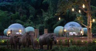 الفقاعات الشفافة.. فنادق غير تقليدية تجذب السياح حول العالم