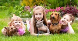 7 فوائد للطفل فى تربية الحيوانات الأليفة بالمنزل
