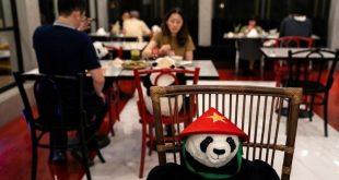 هل تكره تناول الطعام بمفردك؟ .. أحد المطاعم في تايلاند لديه الحل