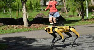 كلب ألي لتحذير الناس من كورونا والبقاء في المنطقة الآمنة