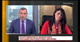 منصة لتنسيق جهود شركاء التنمية لدعم قطاعات ذات أولوية للاقتصاد المصرى