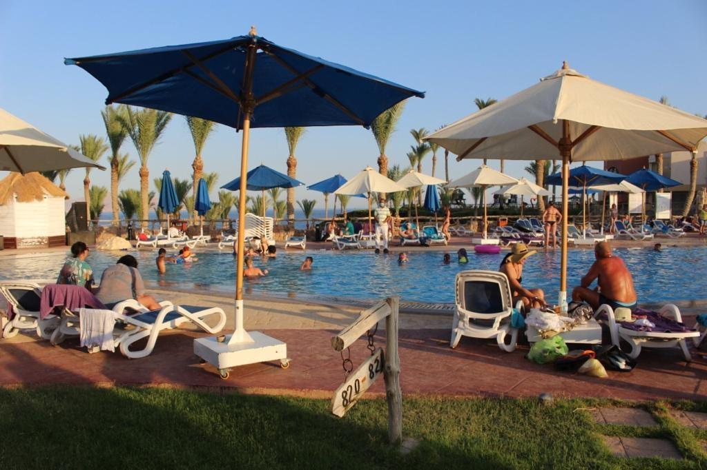 بدء عودة رحلات سياح أوكرانيا وبيلاروسيا وسويسرا بعد قضائهم أسبوع فى مصر