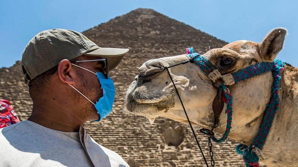 بي بي سي .. مصر تسعى لإنعاش السياحة والخروج من أزمة كورونا بأقل الأضرار1