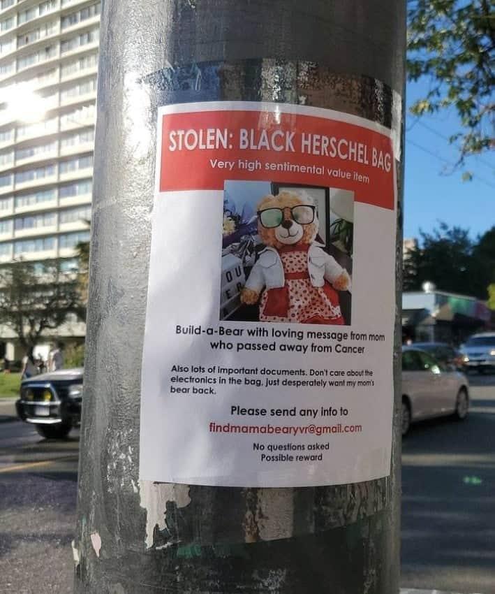 حملة لاستعادة دمية دب مسروقة فى كندا والجائزة 5 آلاف دولار
