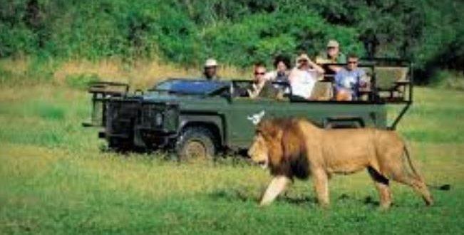 دراسة استقصائية لمنظمة السياحة العالمية تكشف عن 5 مجالات لتعافى إفريقيا