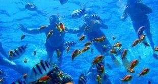 البيئية تتوقع تضاعف أعداد السياح بالمحميات الطبيعية فى مصر 4 مرات