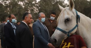وزير الزراعة يتفقد أعمال تطوير ورفع كفاءة محطة الزهراء للخيول العربية