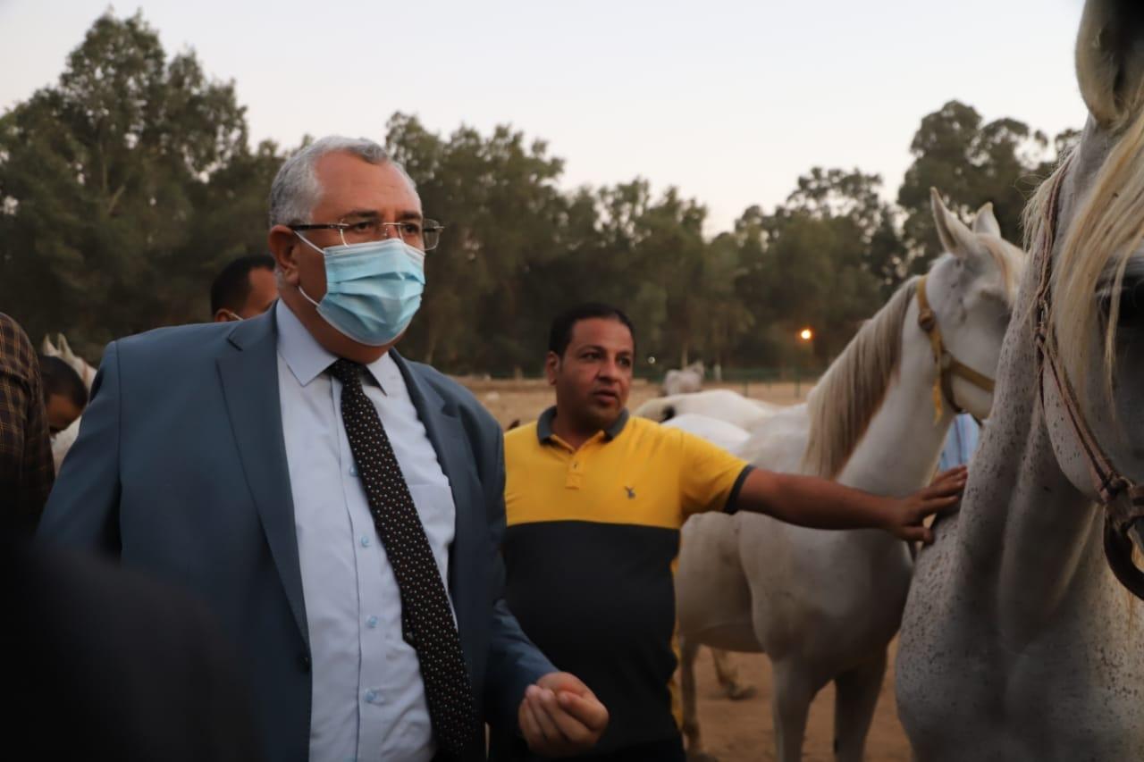وزير الزراعة يتفقد أعمال تطوير ورفع كفاءة محطة الزهراء للخيول العربية1