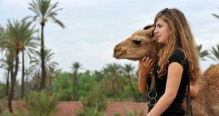 الأزمة تشتد وشكوى من الإيقاع المتسارع .. السياحة القروية أمل جديد للمغاربة
