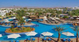 رواد السياحة تكشف تقليص حصة بنك مصر ببيع 685 ألف سهم بقيمة 10 ملايين جنيه