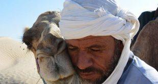 بالأرقام خسائر الدول العربية من توقف السياحة والسفر وكيف تعاملت الحكومات؟3