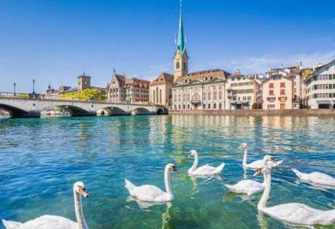 وباء جديد يهدد السياحة العالمية يظهر فى فرنسا .. ونفوق أعداد كبيرة من البط