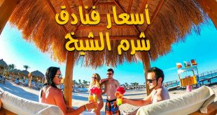 الكرنك تطرح عروض عيد الحب بفنادق القاهرة وشرم الشيخ والغردقة بأسعار مخفضة
