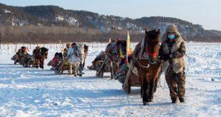 ركوب عربات التزلج المجرورة بالخيول نشاط ترفيهي منتشرة في قرية بيجي