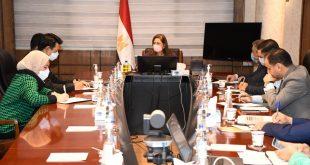 وزيرة التخطيط تدعو الكوريين للاستثمار فى توطين الصناعات التكنولوجية بمصر