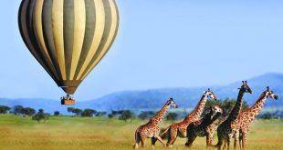 كينيا تسعى للاستفادة من الهند لتعزيز أرقام السياحة الدولية خلال 2021