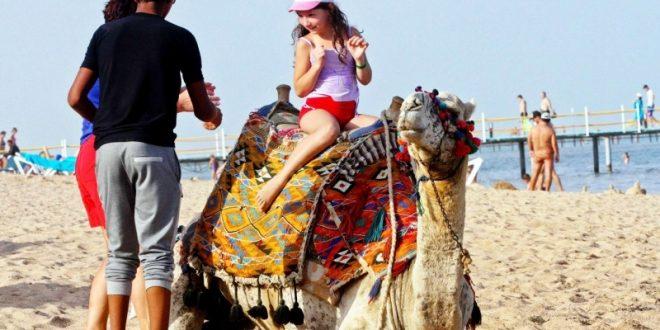 خبير يكشف ما قدمته مصر لعودة السياحة الروسية