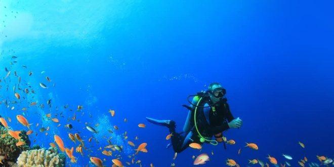 السياحة : شتي في مصر نجحت في تحقيق ما دُشنت من أجله وإشغال الفنادق 50%