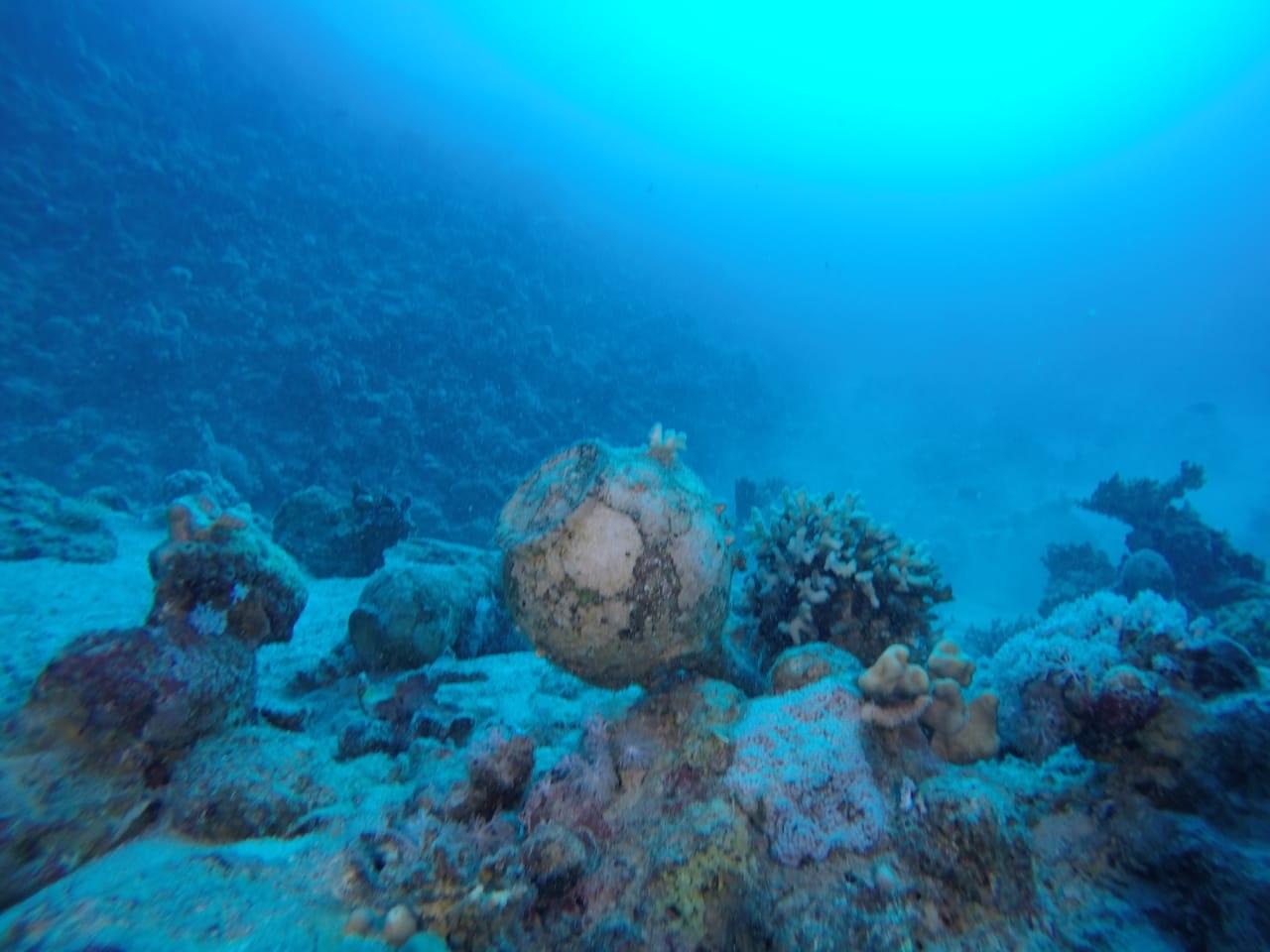 العثور على مقدمة السفينة الغارقة بجزيرة سعدانة بالبحر الأحمر