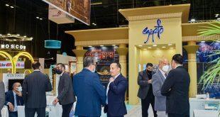 بيان لوزارة السياحة حول مشاركة مصر في فعاليات معرض الفيتور بمدريد