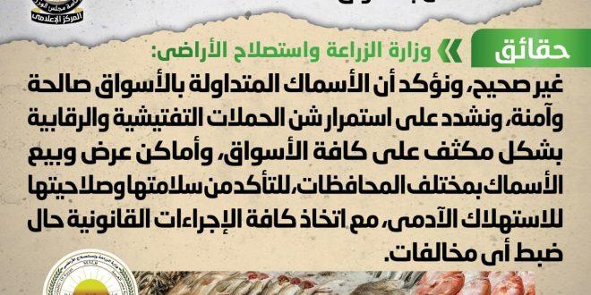 انتشار أسماك فاسدة وغير صالحة للاستهلاك الآدمي بالأسواق المصرية .. شائعة