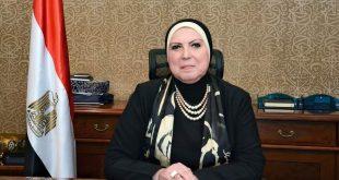 وزيرة الصناعة تصدر قراراً باشتراطات الافراج عن سيارات الركوب الكهربائية