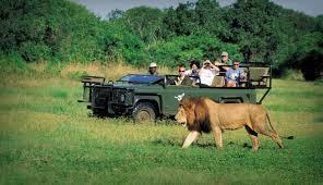 منظمة السياحة العالمية تروج لدول أفريقيا بقصص إيجابية وتجارب فريدة