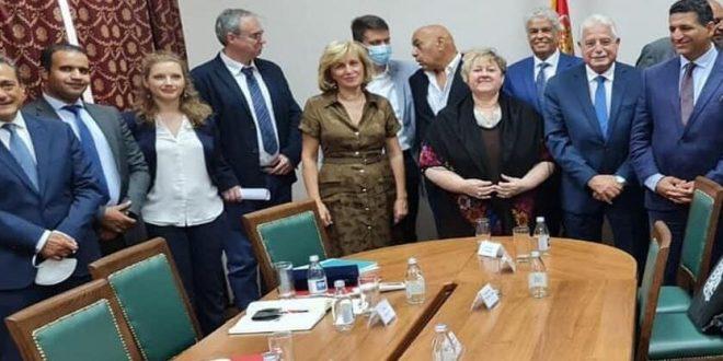 20 ٪ منحة للمشروعات المصرية بصربيا وفودة يطلب تشغيل طيران إير كايرو