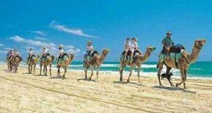 السياحة الداخلية تنعش دهب وتقفز بمعدل إشغالات الفنادق والمنتجعات إلى 85%