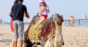 السياحة تصدر تقريراً عن الحملات الترويجية الموجهة للسوق العربي