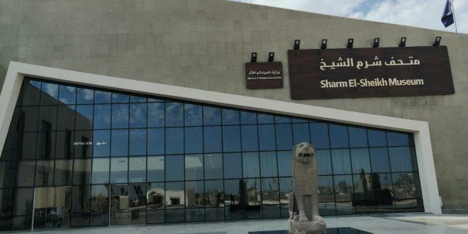 جمهور متحف شرم الشيخ يختار تابوت مومياء تمساح لتكون تحفة شهر أغسطس