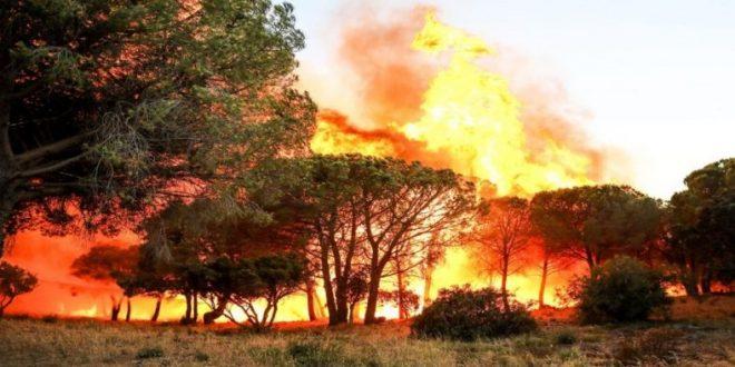 اندلاع حريق ضخم في منطقة فار والنيران المشتعلة تصل جنوب فرنسا