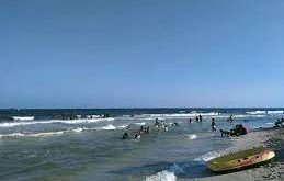 محافظ الإسكندرية يفرض غرامات مالية 54 ألف جنيه على مستأجري 6 شواطئ بالعجمي